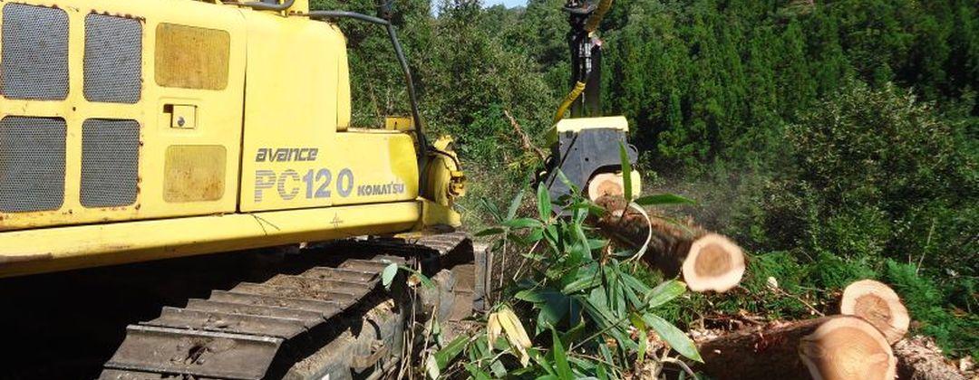 AFM 1000 stroke harvester head on Komatsu excavator.